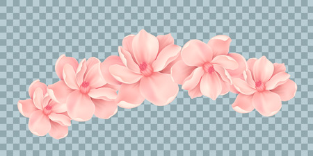 Vector Bali flowers border isolated on transparency grid background Stock Vector - 125724508