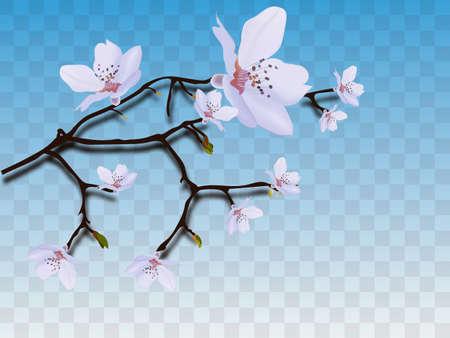 Blooming cherry. Spring background. Falling sakura pink petals. Illusztráció