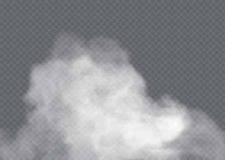 Fog or smoke isolated transparent special effect. White vector cloudiness Ilustração