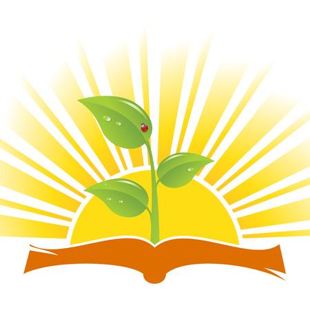 문학의: Book with plant and ladybird on sunrise background, vector illustration