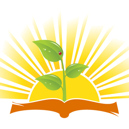 seedling: Book with plant and ladybird on sunrise background, vector illustration