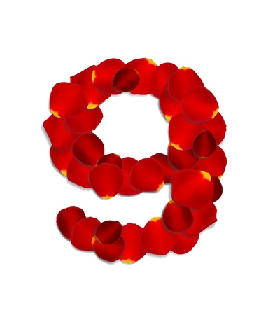 nine: Number 9 made from red rose petals