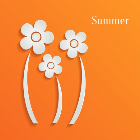 Summer white flowers on orange background Vector
