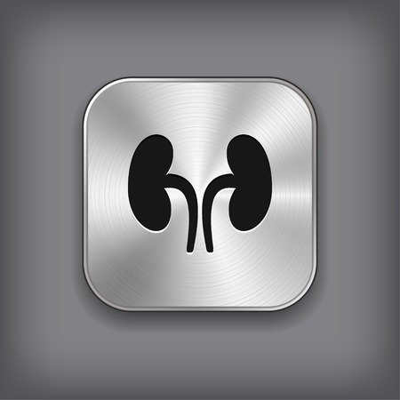 urology: Kidneys icon - vector metal app button with shadow