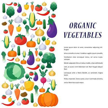 organic concept: Vector Vegetables Background in Flat Style, Concept Organic Food, Vegetarian Menu, Healthy Diet. Design Element Template Illustration