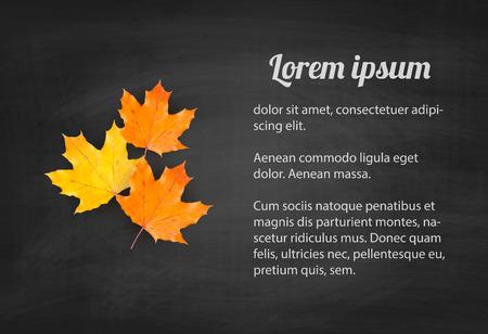 Herfst achtergrond met realistische herfst maple verlaat op het bord. Vector terug naar school krijtbord banner