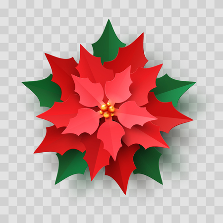 Vector Red Christmas Poinsettia Flower in paper cut style isolated on transparent background. New year paper craft symbol, Christmas star flower Illustration