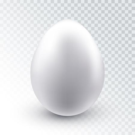 Uovo di gallina bianco realistico di vettore con ombra isolato su sfondo trasparente