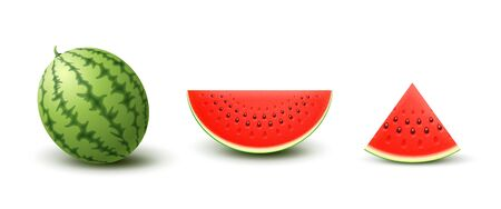 Set of Realistic Watermelons