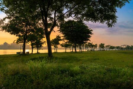 Beautiful Korean summer Seoul scenery. Sunrise and trees at Hangang River Park in Seoul.