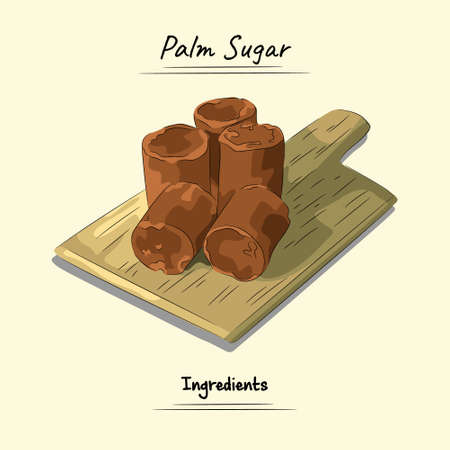 Palm Sugar On Wooden Illustration, Ingredients For Cooking Some Food, Sketch & Vector Style Vecteurs