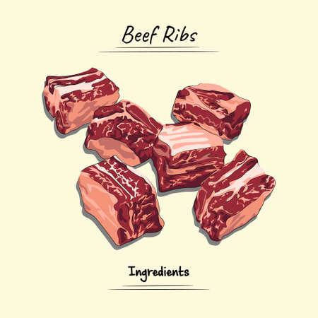 Beef Ribs Illustration, Ingredients For Cooking Some Food, Sketch & Vector Style