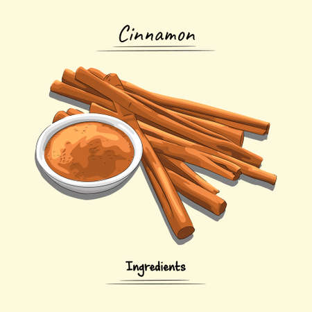 Cinnamon Illustration, Ingredients For Cooking Some Food, Sketch & Vector Style
