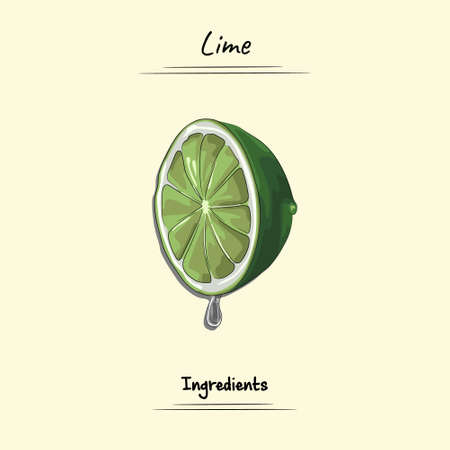 Lime Illustration Used Ingredients For Cooking Some Food, Sketch & Vector Style
