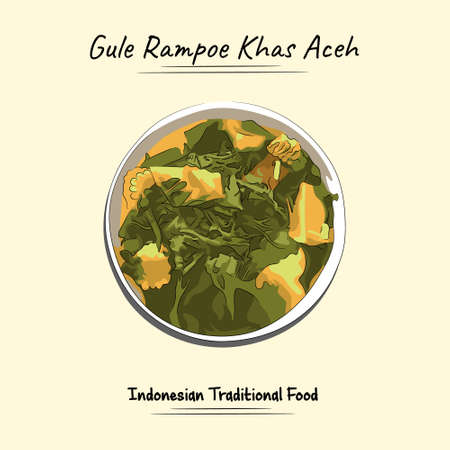 Illustration sketch combine vector style of gule rampoe khas aceh,Indonesia. Good to use for restaurant menu, Indonesian food recipe book and food content.