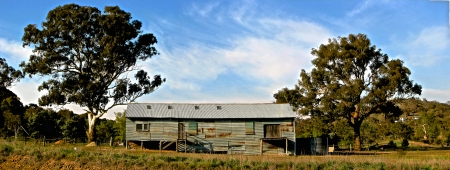 Old Australian tin sheep shed in the outback photo