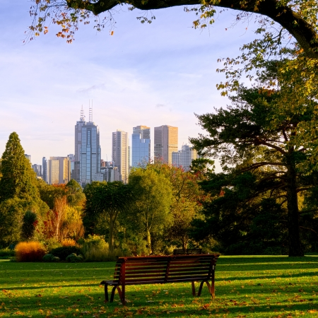 autumn in the city: Come and enjoy a beautiful fall day in Melbourne.