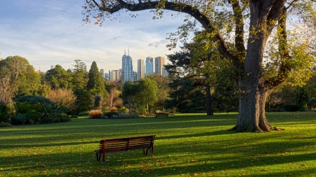 botanical branch: Come and sit in one of Melbourne fantastic gardens and enjoy the views.