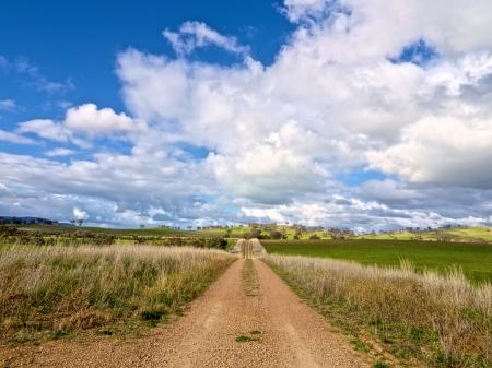 Straight gravel road leading through Australian farmland