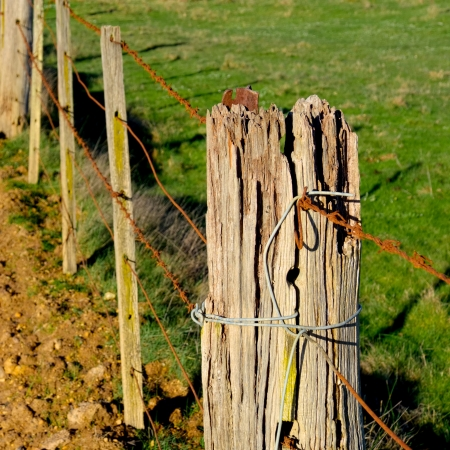 wooden rural fence post in need of repair Stock Photo - 21017831