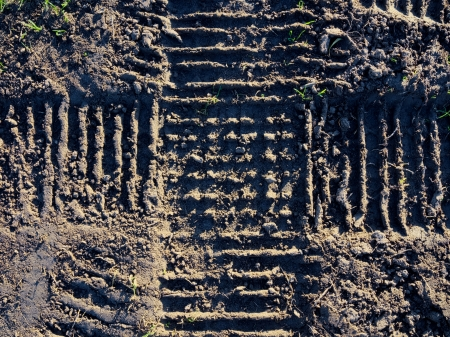 close up of cross pattern of tyre tracks impacting on wet damaged lawn Stock Photo - 22139242