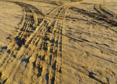 diverging pattern of four wheel drive tracks in wet yellow sand Stock Photo