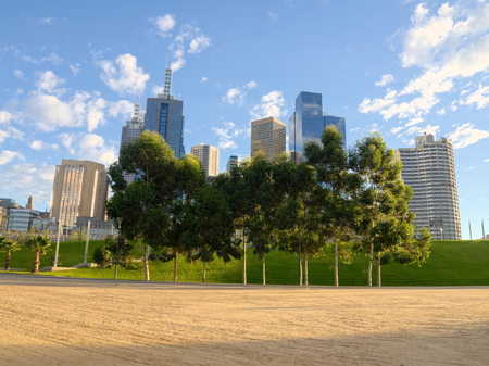 melbourne with trees and grass photo