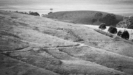deforestacion: La deforestación en una ladera en Victoria, Australia Foto de archivo