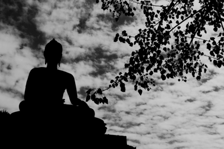 believes: Buddha statues Silhouette with bho tree background Stock Photo