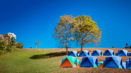 Camping grounds on dry grass hilltop with Love tree and blue sky at Doi Samer-Dao in Nan , Thailand,Which is a beautiful check-in point