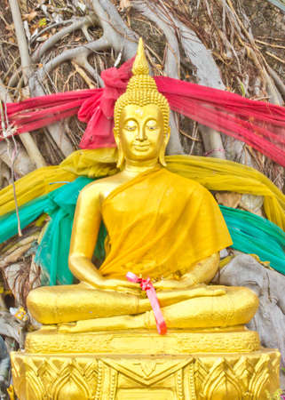Golden Lord Buddha under banyan tree Stock Photo