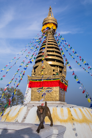 Swayambhunath or Monkey temple is an ancient religious architecture atop a hill in the Kathmandu Valley with a clear blue sky from Swayambhu, west of Kathmandu City, Nepal , March 2019 Reklamní fotografie