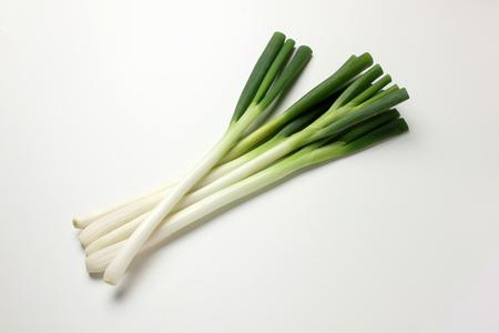 Leek  Green onion Stock Photo