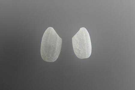 White rice Stok Fotoğraf