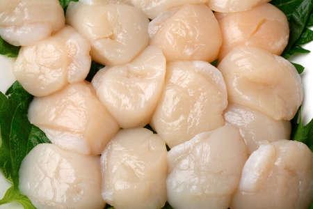Sashimi of scallops Standard-Bild