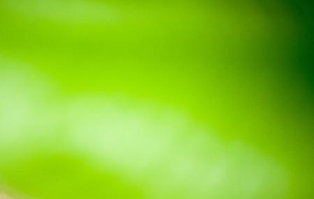 saint patty's: ?background  blur Stock Photo