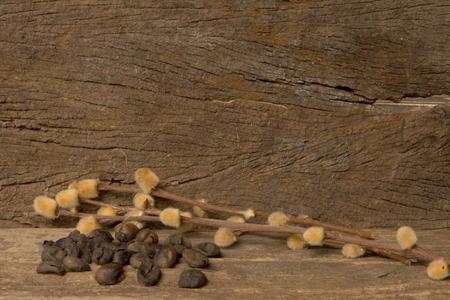 background  dry  flower Stock Photo