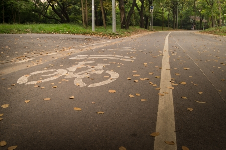 bicycle line in Thailand park,JJ park Thailand photo