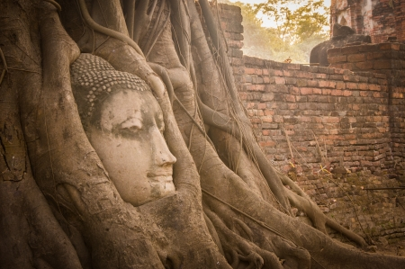 Buddha statue Thailand photo