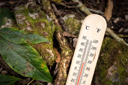 termometer: thermometer with cold temperature on the top of mountain in Thailand