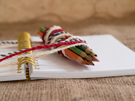 Pencil, placed on the diary. 写真素材