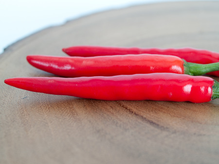 tropical shrub: Red chili, is native to the tropical Americas. The plant is a shrub or small. Stock Photo
