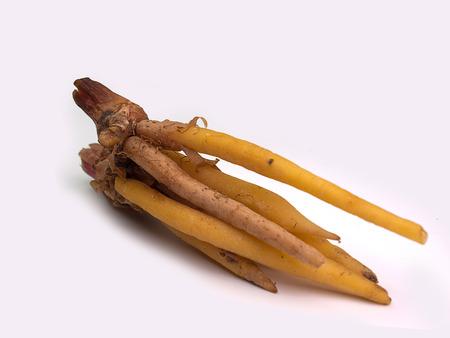 rotunda: Fingerroot, Kaempfer, Lesser Galanga  (Ingredients for Thai Cuisine) Stock Photo