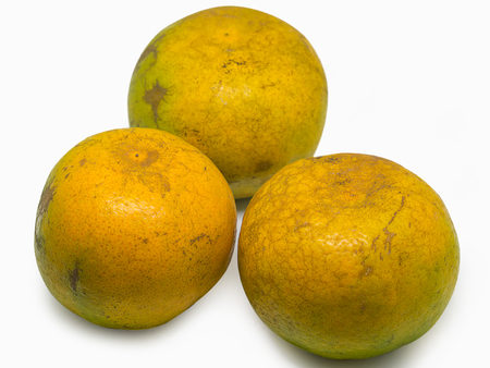 Group of fresh oranges , Placed on a white background.