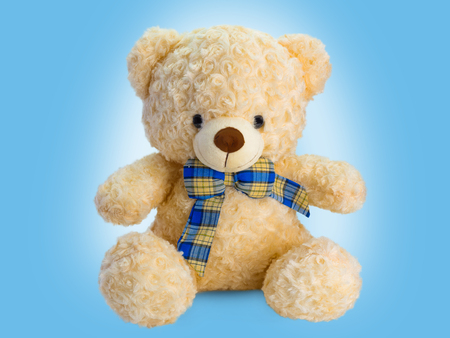 Cute teddy bear isolated on blue background.