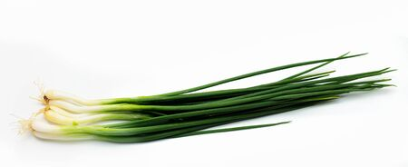 spring onion isolated on white background. (Good food for health) 版權商用圖片