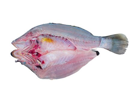 Fresh sea bass fillets and cut isolated on white background. (This has clipping path) 写真素材