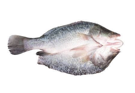 Fresh sea bass fillets and cut isolated on white background.