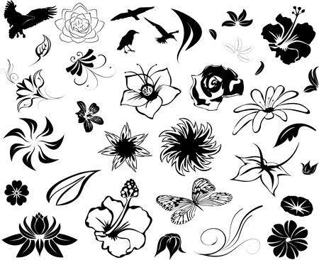 varieties: vector flower set