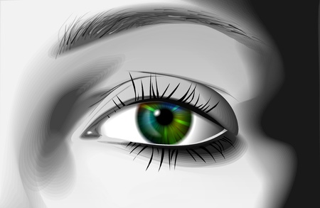 eye illustration  Stock Vector - 9923417